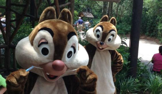 Disney: fogueira, mashmallow, música, cinema e Tico e Teco.