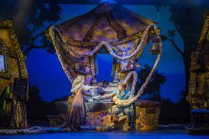 Navio da Disney, tangled o musical
