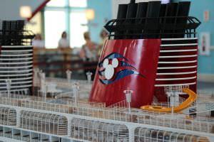 Miniatura Navio da Disney