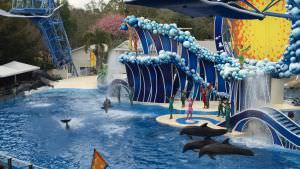 Sea World, Blue Horizons