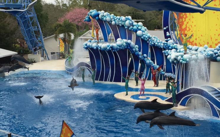 Nossa visita ao Sea World Orlando, todas as novidades!!!