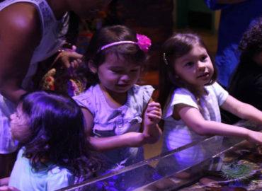 Áquario de Orlando lançou um programa voltado para babys