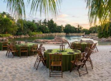 Discovery Cove lança experiência de jantar na praia