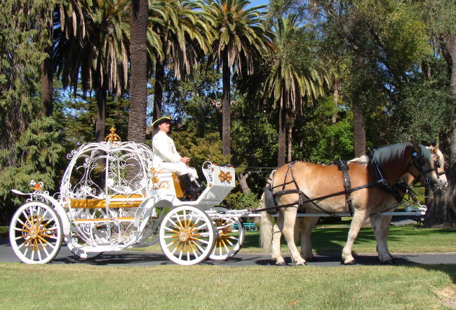 stylish-Carriages-for-weddings-8
