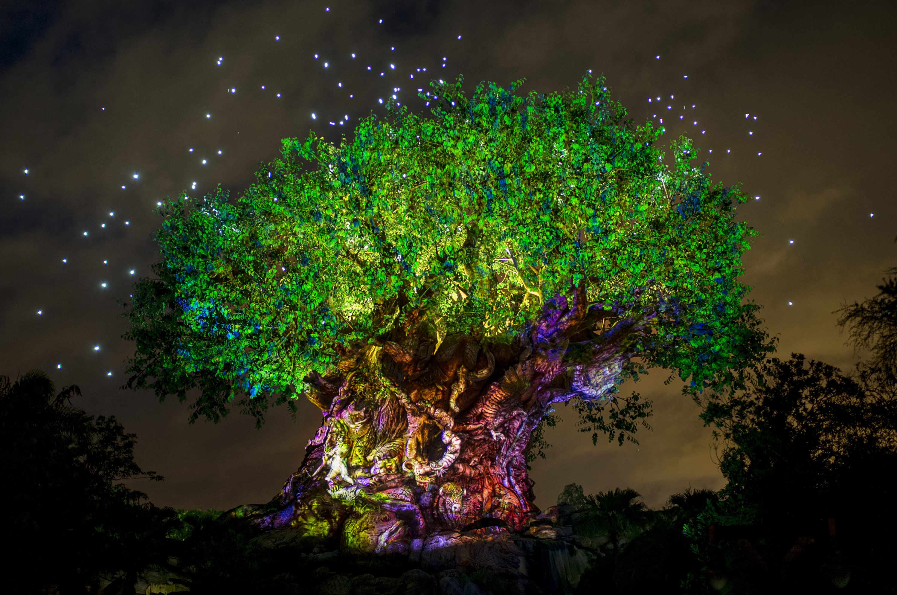 Disney's Animal Kingdom Aglow in Celebration of Pandora Ð The World of Avatar