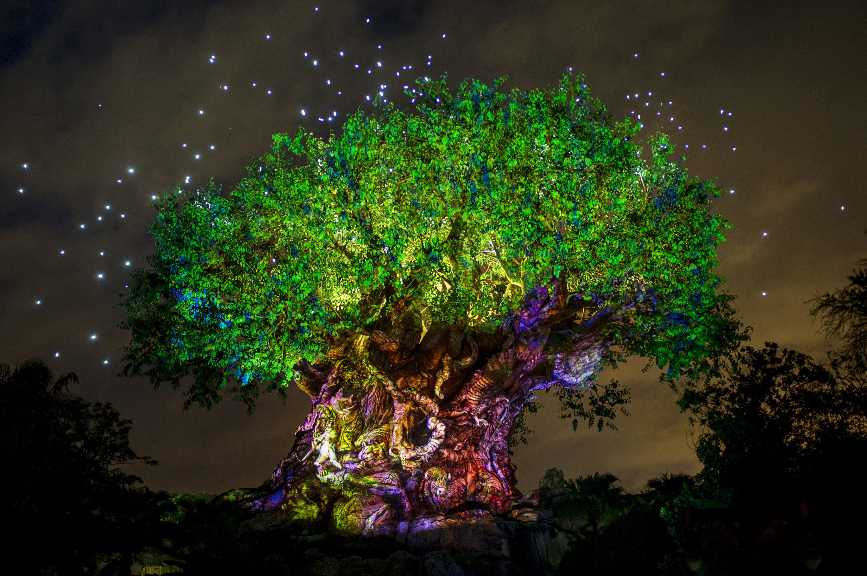 Disney's Animal Kingdom Aglow in Celebration of Pandora Ð The World of Avatar