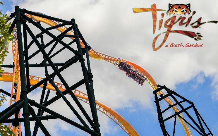 Busch Gardens Tampa Bay anuncia nova montanha russa para 2019