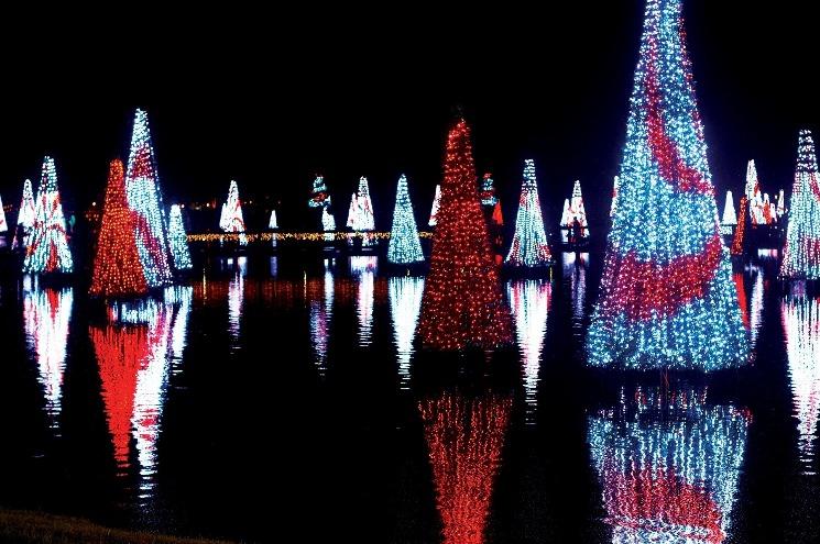 Novembro será agitado no SeaWorld Orlando